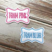 Team Pink and Blue